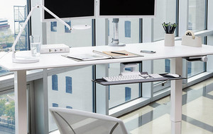 Complete Elite Ergonomic Office Sets