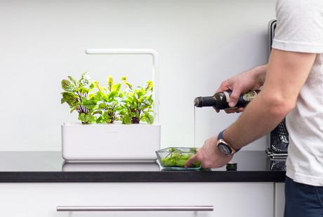 Indoor Smart Gardens