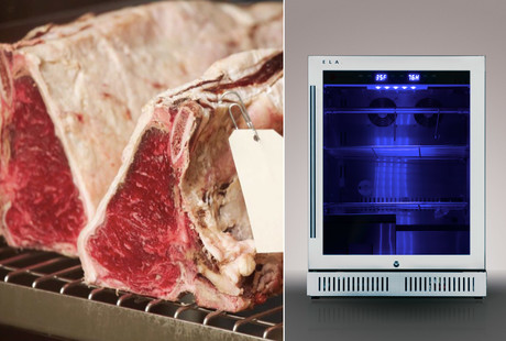 Smart Dry-Aging Mini-Fridge