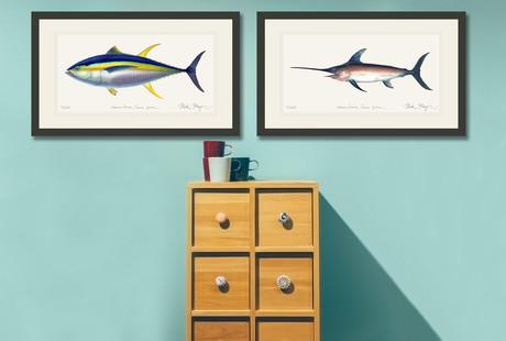 Detailed Fish Portraits