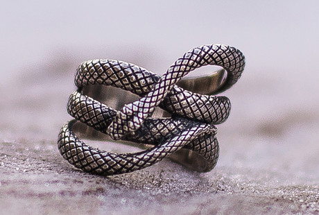 Folkloric Animal Rings + Pendants