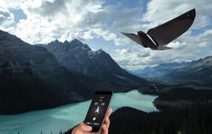 The Flying Smartphone Birdbot