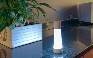 The Multipurpose Smart Light