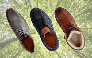 Excursion-Ready Footwear
