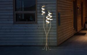 Contempo Lights