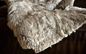 Alpaca Couture Collection