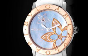 Elegant Ladies Timepieces