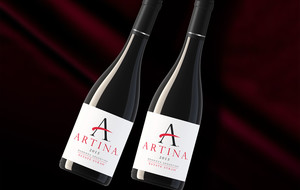 Artina Wines of Mendoza