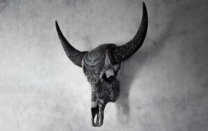 Skull Bliss